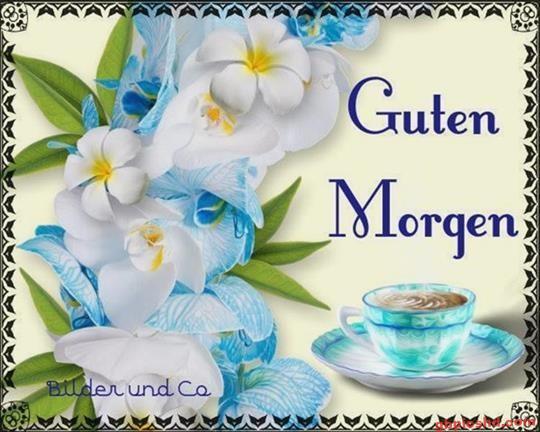 Bilder-Guten-Morgen_18_234b8
