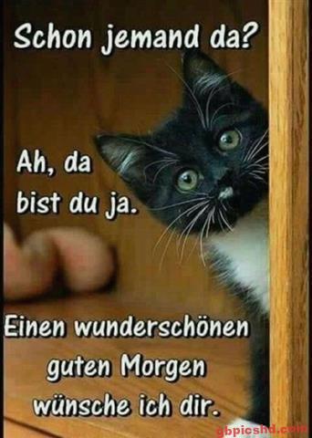 Guten-Morgen-Bilder-Lustig_19_f94ad