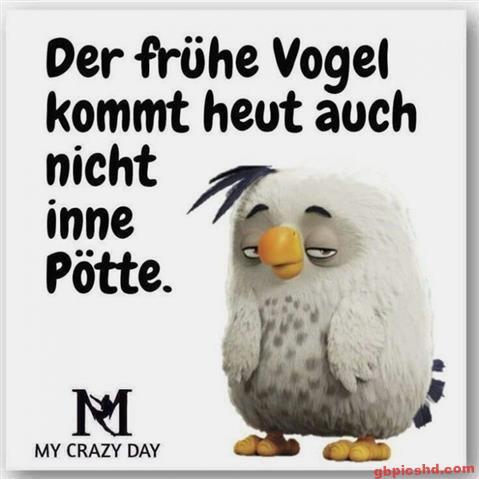 Guten-Morgen-Bilder-Lustig_34_baaec