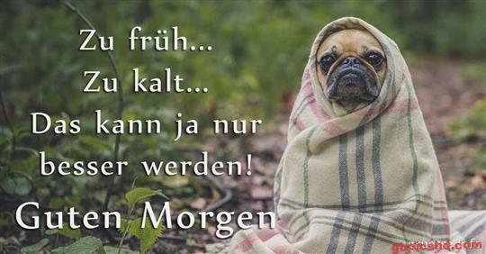 Guten-Morgen-Bilder-Lustig_8_d2b09