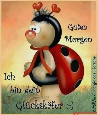 Lustige-Guten-Morgen-Bilder_13_045fe