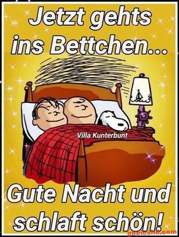 gute-nacht-bild_13