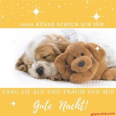gute-nacht-bild_25