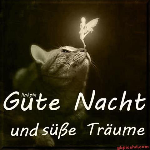 gute-nacht-bild_26