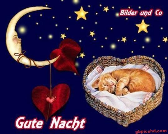 gute-nacht-bild_27