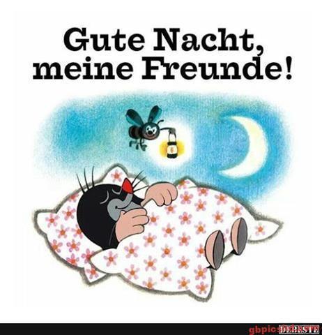 gute-nacht-bilder-lustig_24