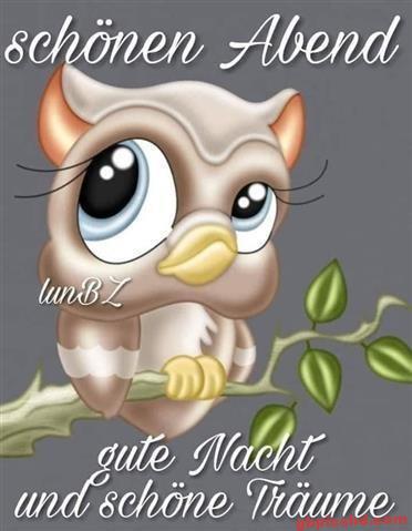 gute-nacht-bilder-lustig_30