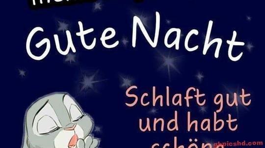 gute-nacht-freunde_17