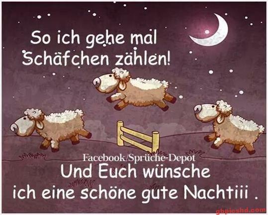 gute-nacht-freunde_25