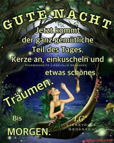 gute-nacht-freunde_30