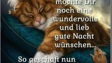 Photo of gute nacht lustig