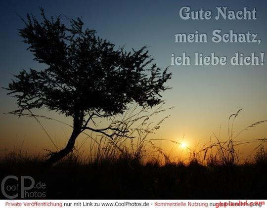 gute-nacht-mein-schatz_23