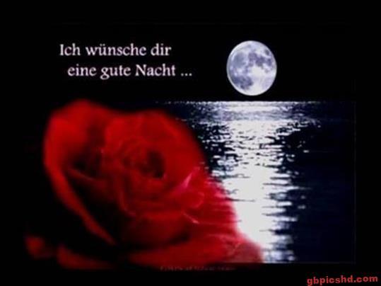 gute-nacht-schatz_15