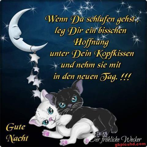 gute-nacht-schatz_31