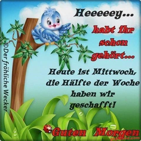 guten-morgen-mittwoch_5