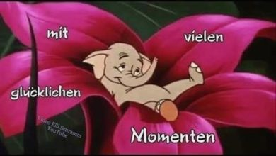Photo of guten morgen montag