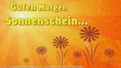 Photo of guten morgen sonnenschein