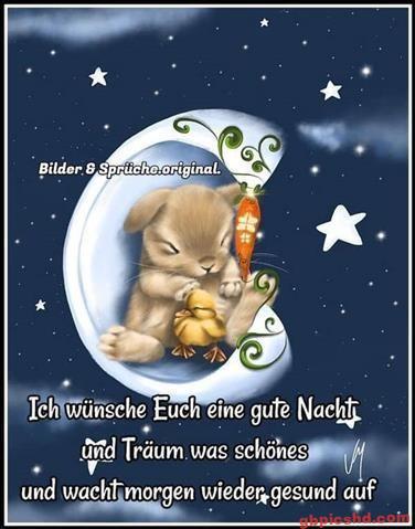 lustige-gute-nacht-bilder_14
