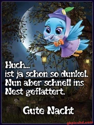 lustige-gute-nacht-bilder_4