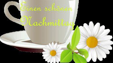 Photo of Schönen Nachmittag Gif Bilder