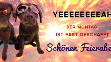 Photo of Montag Nachmittag Bilder Gif