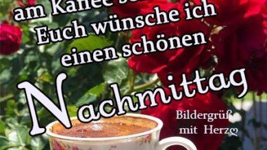 Photo of Montag Nachmittag Bilder Kostenlos