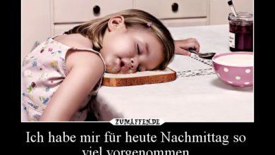 Photo of Sonntag Nachmittag Bilder Lustig