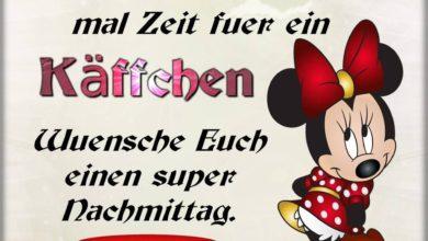 Photo of Super Nachmittag Bilder