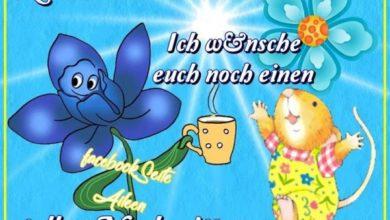 Photo of Tollen Nachmittag Bilder