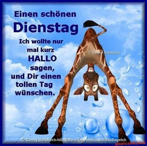bilder-zu-dienstag_16