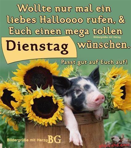 bilder-zu-dienstag_9