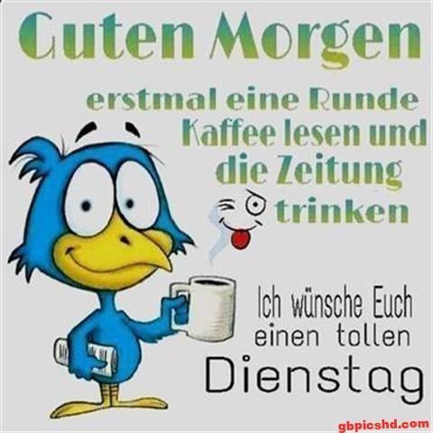 bilder-zum-dienstag-morgen_13