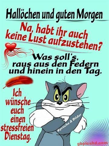 bilder-zum-dienstag-morgen_14