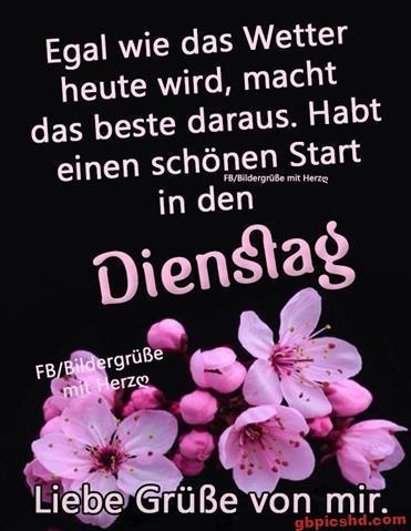 bilder-zum-dienstag-morgen_9