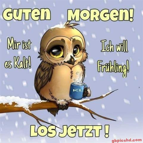 Guten Morgen Dienstag Bilder Winter Morgen