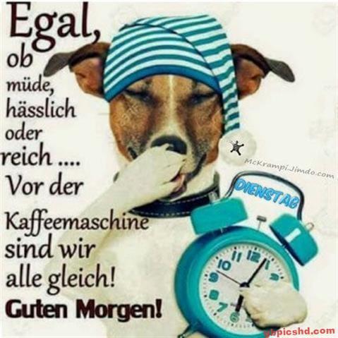 lustige-bilder-guten-morgen-dienstag_11