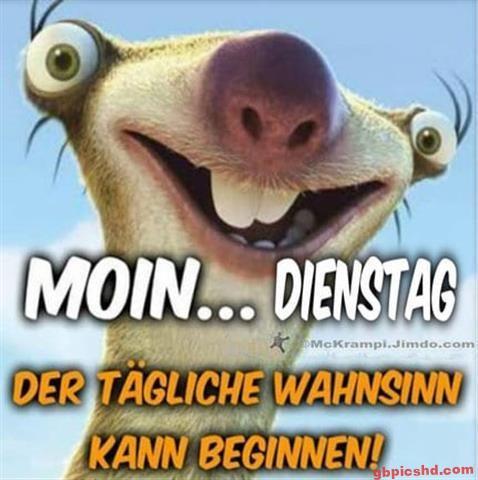 lustige-bilder-guten-morgen-dienstag_14