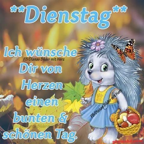 lustige-bilder-guten-morgen-dienstag_4