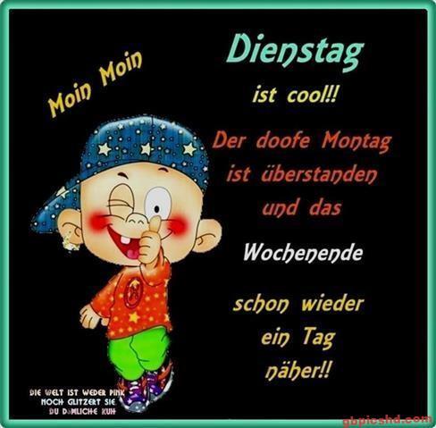 lustige-bilder-guten-morgen-dienstag_8