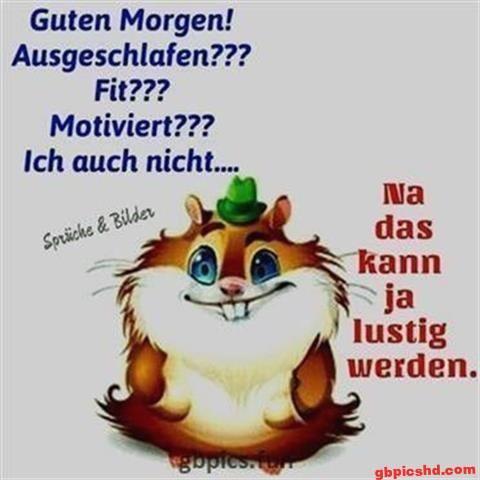 lustige-bilder-guten-morgen-dienstag_9