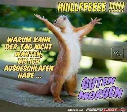 lustige-bilder-guten-morgen-donnerstag_25