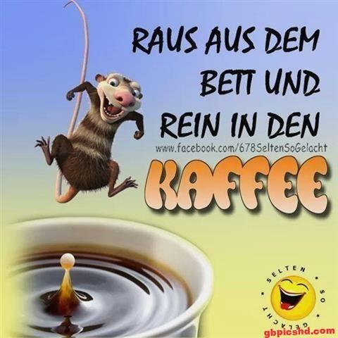 lustige-bilder-guten-morgen-donnerstag_26