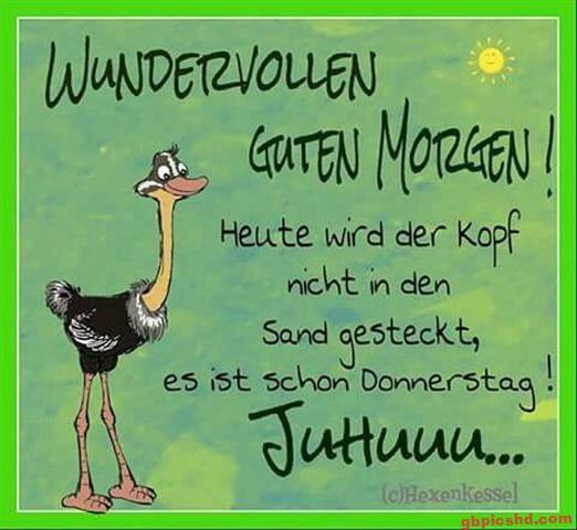 lustige-bilder-guten-morgen-donnerstag_5